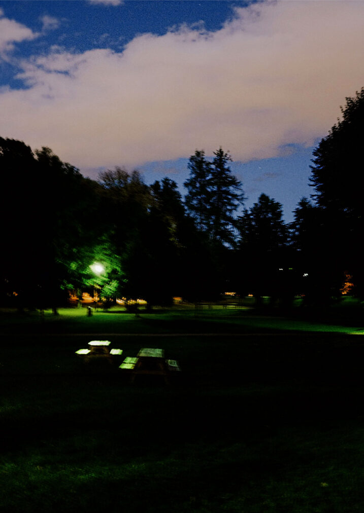 frogner park at night