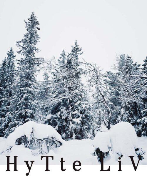 frozen forest surrounding hytta in oslo
